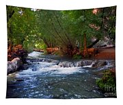 Havasu Creek Tapestry