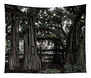 Hawaiian Banyan Trees Tapestry
