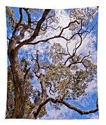 Hawaiian Sky Tapestry
