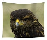 Hawk 1 Tapestry
