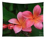 He Pua Laha Ole Hau Oli Hau Oli Oli Pua Melia Hae Maui Hawaii Tropical Plumeria Tapestry