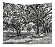Heading South Bw Tapestry