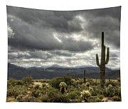 Heavenly Desert Skies  Tapestry