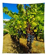 Heavy On The Vine At The High Tower Winery  Tapestry