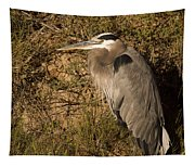 Heron Basking In The Morning Sun Tapestry
