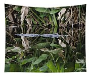 Hiding Tapestry
