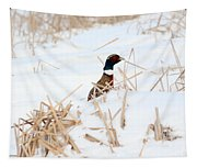 Hiding Rooster Tapestry