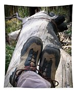 Hiking Boots Tapestry
