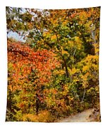 Hiking In Autumn Tapestry
