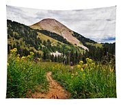 Hiking In La Sal Tapestry