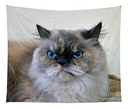 Himalayan Persian Cat Tapestry