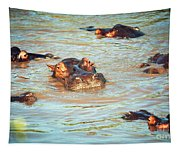 Hippopotamus Group In River. Serengeti. Tanzania Tapestry