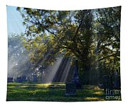 Historic Sibley Cemetery At Fort Osage Missouri Tapestry