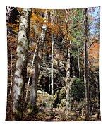 Hocking Hills Trees Tapestry