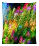 Hoedown Tapestry