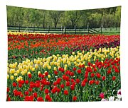 Holland Tulip Fields Tapestry