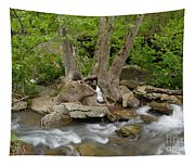 Hollow Tree Tapestry