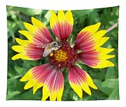 Honey Bee On A Indian Blanket Tapestry