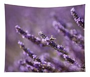 Honey Bee In Lavender Tapestry