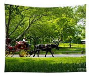 Horse And Carriage Central Park Tapestry