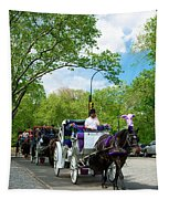 Horse And Carriages Central Park Tapestry