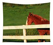 Horse And White Fence Tapestry