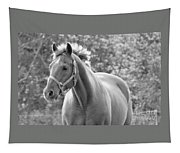 Horse Black And White Tapestry