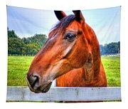 Horse Closeup Tapestry