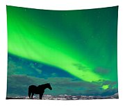 Horse Distant Snowy Peaks With Northern Lights Sky Tapestry