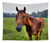 Horse In A Field Tapestry