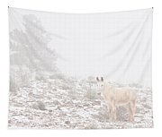 Horse With Winter Season Snow And Fog Tapestry