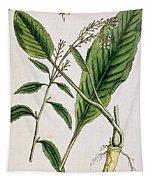Horseradish Tapestry