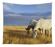 Horses Grazing In Cypress Hills Tapestry