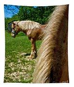 Horses In Meadow Tapestry