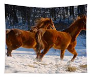 Horses In Motion Tapestry