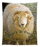 Hows It Going Old English Hunter Green Tapestry