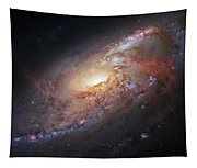 Hubble View Of M 106 Tapestry