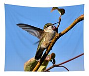Hummer Tapestry