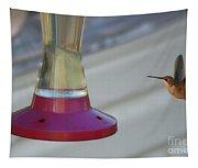 Humming Bird Approaching Tapestry