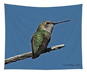 Humming Bird On A Stick Tapestry