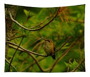 Humming Birds Perched  Tapestry
