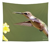 Hummingbird 3733 Tapestry