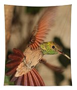 Hummingbird I Tapestry