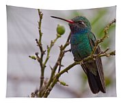 Hummingbird II Tapestry