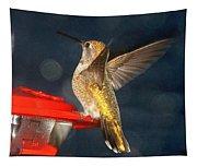 Hummingbird In My Window Tapestry