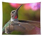 Hummingbird Intensity Tapestry