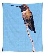 Hummingbird On Acacia Bush Twig Tapestry