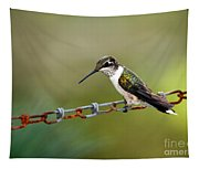Hummingbird Resting On A Chain Tapestry