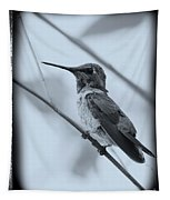 Hummingbird With Old-fashioned Frame 1 Tapestry