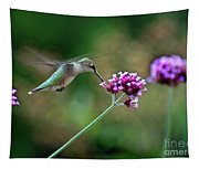 Hummingbird With Purple Verbena Tapestry